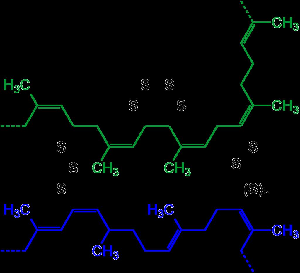 Rubber Accelerators Schematic